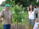 Obstbaumpflanzung_3